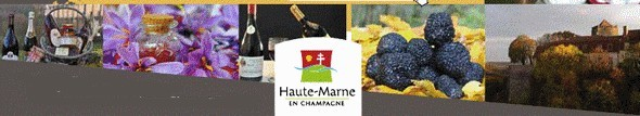 Or rouge et diamant gris: les trésors de la Haute-Marne