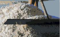 Coup d'envoi de la récolte du Sel de Guérande
