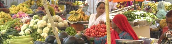 INDE: sur la route des légumes