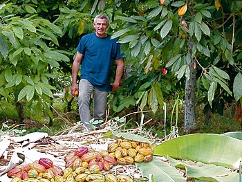 François Pralus, plantation de cacaoyers à Madagascar - ©François Pralus