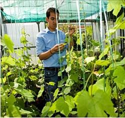 VINNEO: des vins nouveaux du Sud-Ouest pour les pays émergents