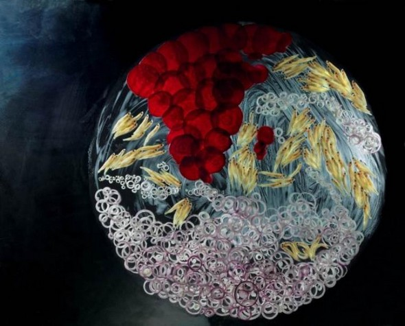 Expo photo à Bercy Village : Mathilde de l'Ecotais – 360° ADN Terre