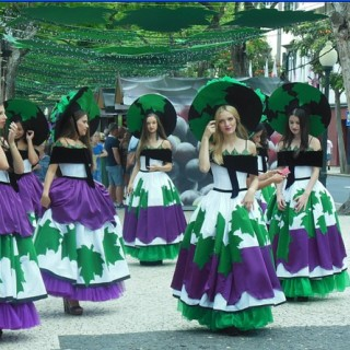 danseuses-vignes-madere