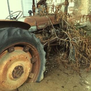 L'avenir de l'agriculture française