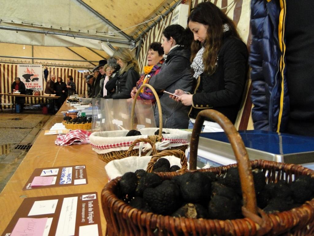 producteurs de truffes en rang d'oignon 1150