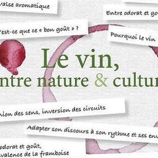 Le Vin, entre Nature & Culture