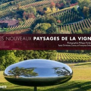 paysages-vigne