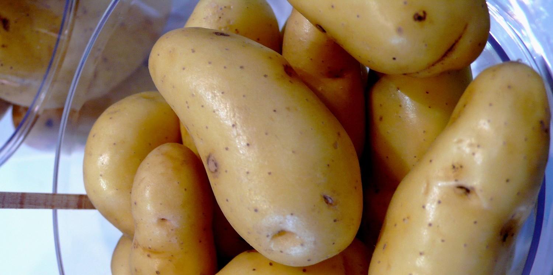 pomme-de-terre-home-large