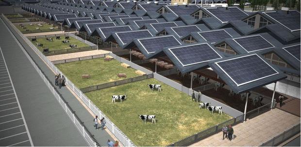 Les animaux seront élevés sur place, dans une ferme biologique.