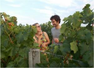 concours vignerons