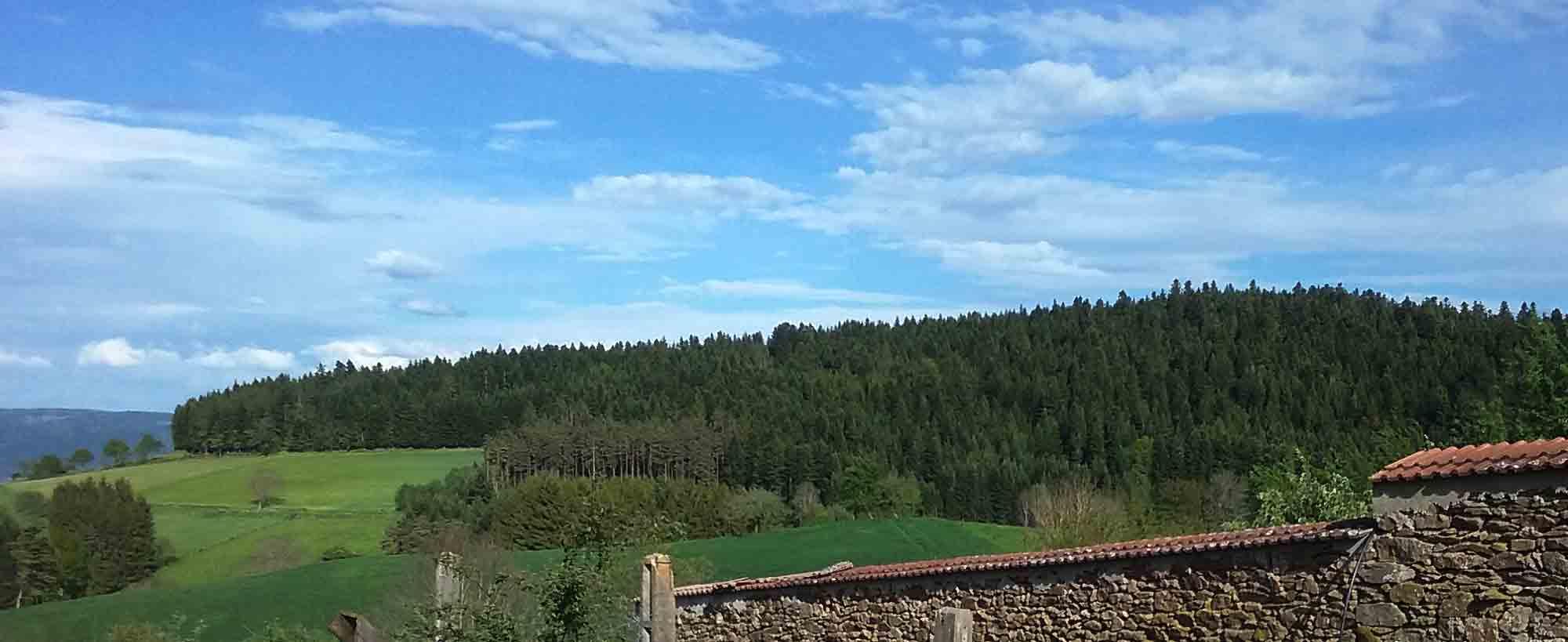 Saint-Sauveur-la-Sagne (1)