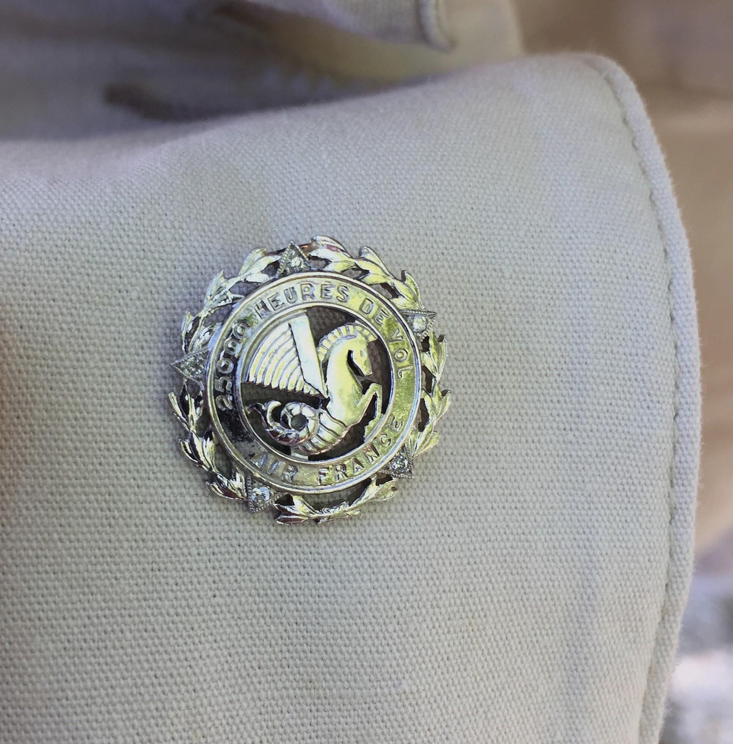 Un pin's exceptionnel à la boutonnière 1500