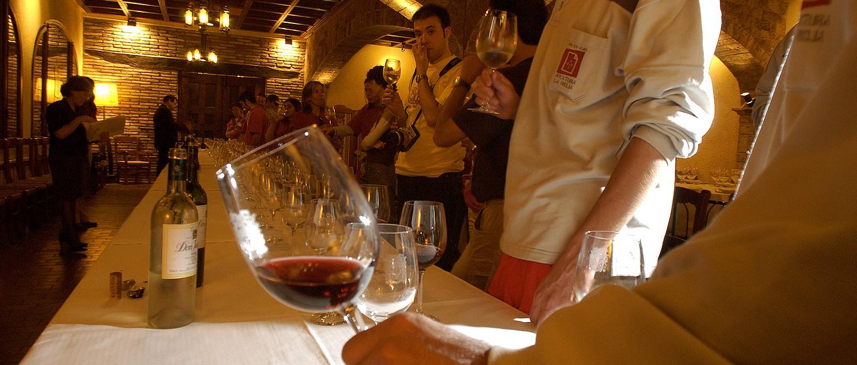 Dégustation Cata de vino