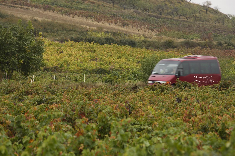 Vinobus turismo 1500