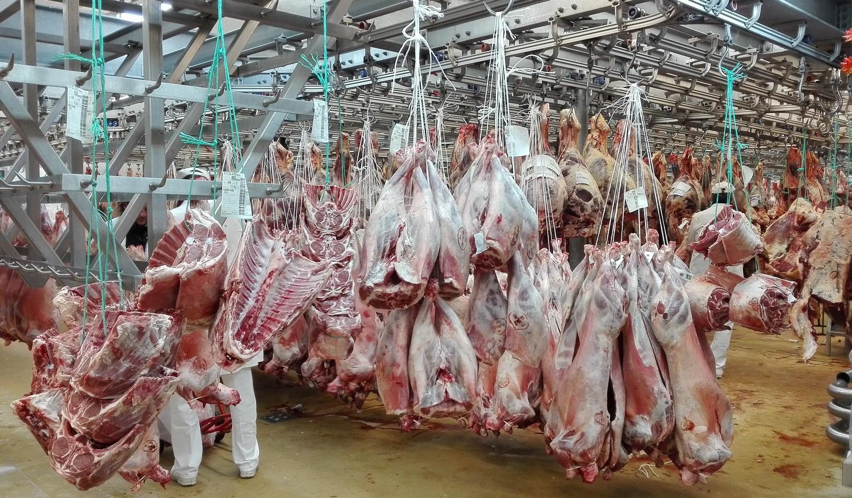 lepavillon des carcasses ©I.Monrozier