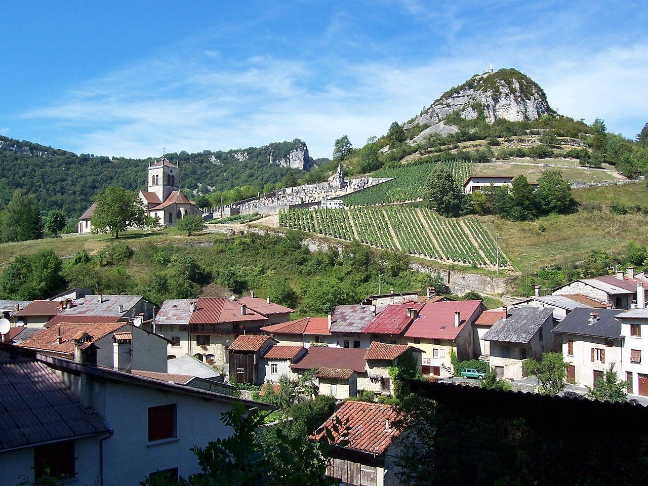 vignes à Cerdon