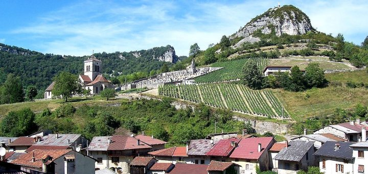 vignes à Cernon Ain home