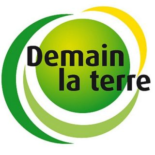 logo demainlaterre