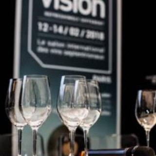 vino vision