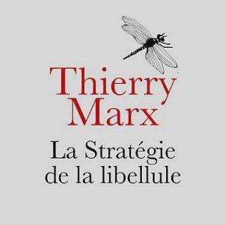 La-Strategie-de-la-libellule vignette