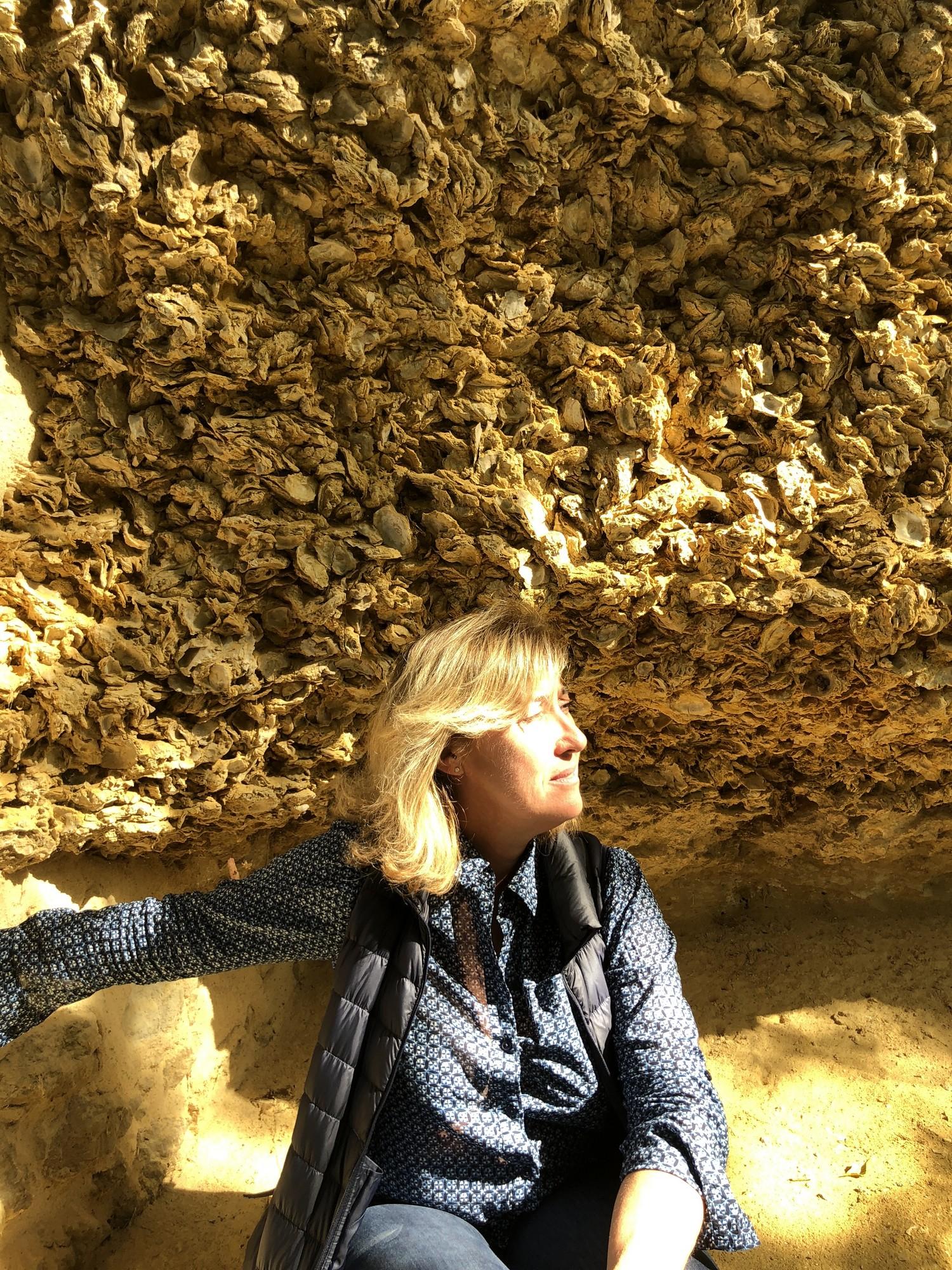 le terroir de calcaire coquiller de Sainte croix du mont ©Sylvie Deroire