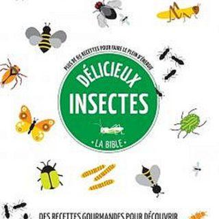 couv livre insectes - 350