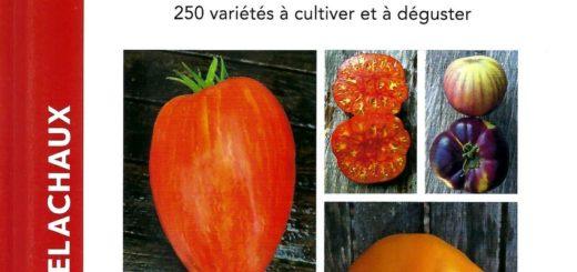 Tomates couv