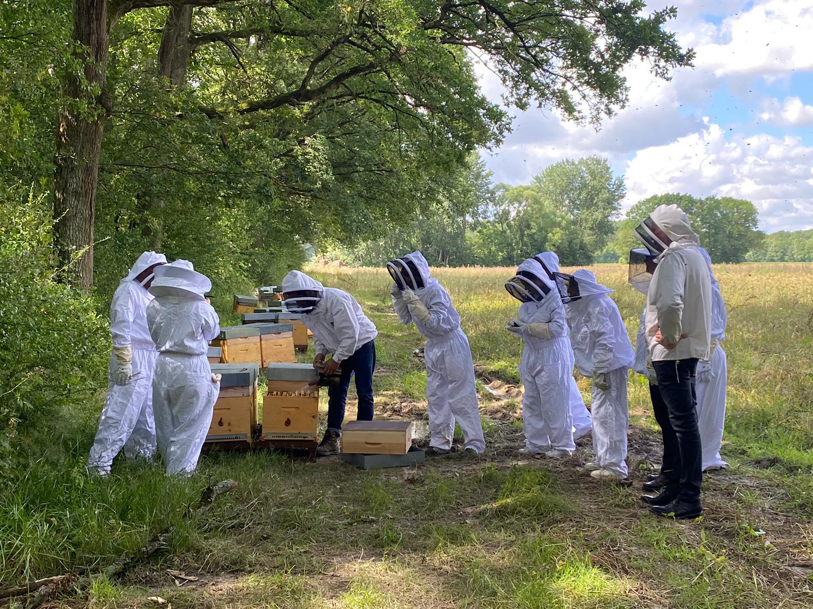 Tout près des ruches! ©DR
