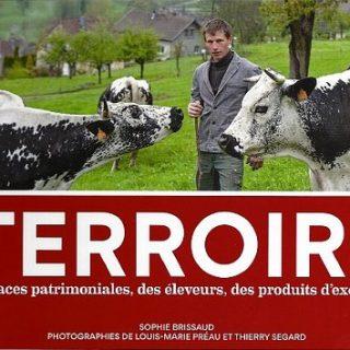 terroirs vignette