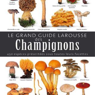 guide larousse champignons